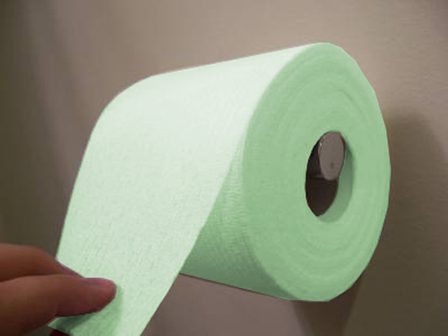 04_image4_toilet-paper-over2_500