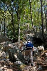 Sentiero n4 (Roveclimb) Tags: autumn mountain alps hiking path sentiero rai canzo valmadrera escursionismo malascarpa cornizzolo prasanto monterai