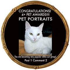 PET PORTRAITS 4+ AWARD CODE<br>No