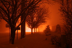 Fire and Ice (Ghetto Steve) Tags: trees winter snow night fire apocalypse