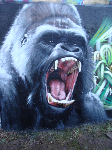angry screaming gorilla face drawing
