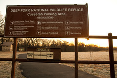 Deep Fork NWR (Schulter, Oklahoma, United States) Photo
