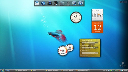 desktop_20090312