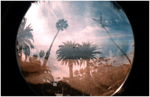 Catalina Island - FISHEYE