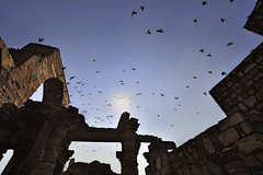 India New Delhi _D7C2022 (youngrobv) Tags: india geotagged nikon asia minaret unescoworldheritagesite gps fx complex qutub minar n1 bharat newdelhi qutb qutab uttarpradesh  0812 robale hindustan alaidarwaza d700    youngrobv 1424mmf28g solmeta alaigate  d7c2022