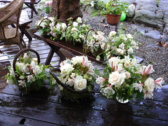 Flower Arrangements and Order (chrliegrl) Tags: flowers ireland wedding roses white mist green bird love barn bells real diy backyard nest lace budget breath rustic cream ivory queen homemade planning advice eucalyptus carnation phlox babys gardenia annes inexpensive personalized freesia reasonable scabiosa snapdragon alstromeria centerpieces lisianthus fieldbunch