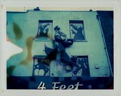 Rats Tease Cat. (colster.) Tags: building london film window shop analog cat vintage buildings polaroid rat camden front rats instant londonist instantfilm polaroid340 peelapartfilm 210309 colster panpola