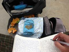 113/365 Typical Tuesday (VirGeenya) Tags: orange pen journal purse backpack clementine bolsa mandarina contemplate naranja crackers diario mochila day113 bolgrafo galletas 365days contemplar