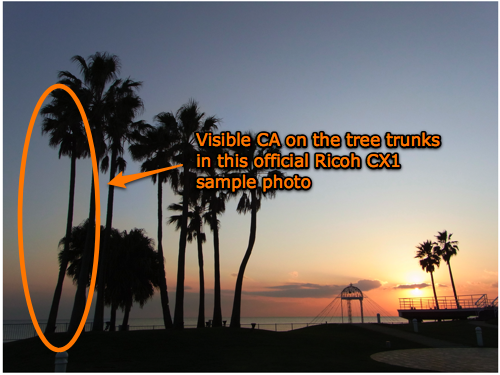 Visible CA (chromatic aberration) on the tree trunks in this official Ricoh CX1 sample photo