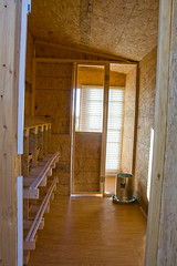 Chicken Coop Interior