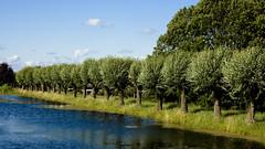 One day in Boskoop 2728 (paralecitam) Tags: blue trees summer sky holland green water field clouds creek canon river eos canal farm willow farmer maciek boskoop wierzba paralecitam 40d burgielski