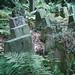 Grabstätte der Familie von Klitzing in Demerthin