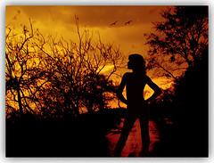 SHE IS  BACK............. (DEVENDRA PAL(AWAY)) Tags: red wild sky cloud india black tree nature beautiful birds silhouette yellow landscape ventana photography photo august dev monsoon gilr click pal 2009 soe littleprince devendra greatphotos cherryontop absolutelyperfect castelfranco mywinner abigfave hechizado goldseal brillianteyejewels betterthangood energiapositiva checkoutmynewpics photodistillery abovealltherest goldenart artofimages qualitysurroundings artorsomethingnew showthebest asbeautifulasyouwant finestimages recoilx adriennesmagicalmoments bellede