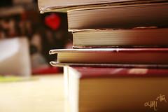 livros. (alineioavasso) Tags: book cotidiano books livro livros duetos frenteafrente pilhadelivros