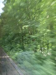 zoef  (pardonreeds) Tags: green speed train germany deutschland groen rail pancake grn bahn schwarzwald blackforest trein spoor duitsland hllental zoef dreisam schnell geschwindigkeit snelheid hirschsprung zwartewoud regionalzug olympuse420 falkensteig hllsteig