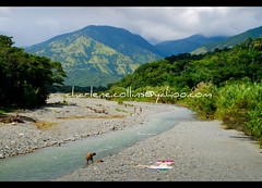 St Thomas: Johnson River (Charlene Collins.still charlene) Tags: river bluemountains jamaica stthomas yallahsriver