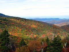 Autumn in TN, What I'm ready for! (vtrrbear) Tags: autumn fall colors blueridgeparkway greatsmokeymountains