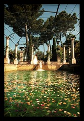 MARIAGE / WEDDING : The Fountain (Sebastien LABAN) Tags: world wedding friends portrait white love face composition hair eyes cotedazur dress ceremony photographers best mariage shoulder glance 83 var sud straphael saintraphael haircutlook freijus
