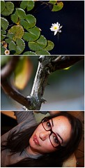 (ClickClickCoyote) Tags: portrait selfportrait flower collage backyard lily lotus chinese thorns thorn lilypad stevemartin shopgirl euroasian myspaceangle