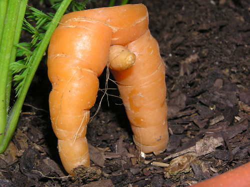 Vegetables And Sex 98