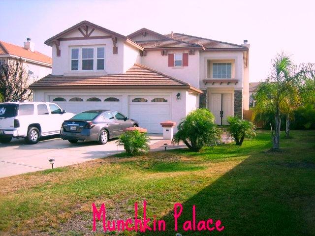 munchkin palace