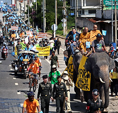 Bangpakong River Rally เดินรณรงค์ที่แม่น้ำบางปะกง (Chang(e) Caravan Day 9)