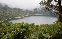 cacao_012 (Drumm Photography) Tags: travel mist green volcano haze costarica foliage tico centralamerica alajuela cacao poas volcaniclake williambyrnedrumm