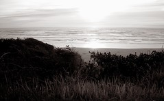 Newport Saturday (pete4ducks) Tags: sunset blackandwhite sun seascape beach water oregon spring curves newport pete cropped oregoncoast 2009 picnik goldenratio pete4ducks hallmarkinn proudshopper