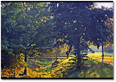 well meet at the catwalk ... (tadelloeser ) Tags: autumn trees sun fall earlymorning meeting catwalk beautifulshot picturepoems mywinners anawesomeshot amomentarylapseofreason d700 tadelloeser diamondstars goldsealofquality goldstaraward amazeandbeamazed themodernimpressionists nikonflickraward lightcapture