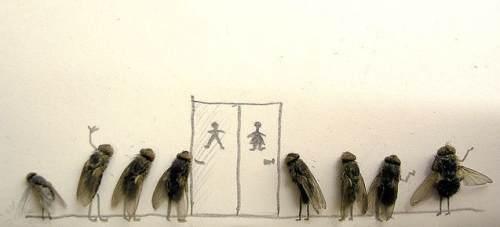 dead-flies-art-5