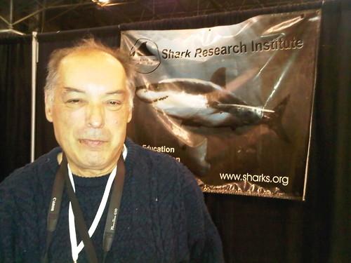 Shark Photographer