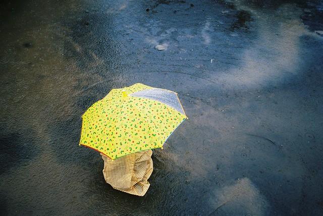 Rainy season @park