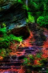 The Paths We Take (jimcrotty.com) Tags: ohio nature landscape photo calm trail journey mystical hockinghills jimcrotty
