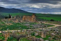 ruinas romanas marruecos volubilis