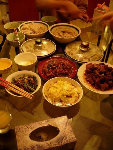 Dumpling Chinese Spring Festival 2009