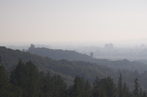 Usually, I can see all the way down the Sonoma Valley to the Golden Gate Bridge 60 miles away. Its so hot, an inversion layer is holding in all this smog.