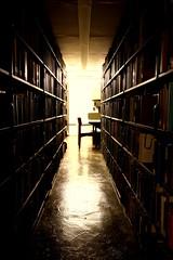 Image: decorative scene of Olin Library stacks