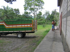 la central Honduras Dic 2008 003