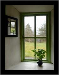 Window Framed (Phil Burns) Tags: ireland green window framed picture gimp olympus photograph frame basil sligo e500 ufraw stormthorgerson