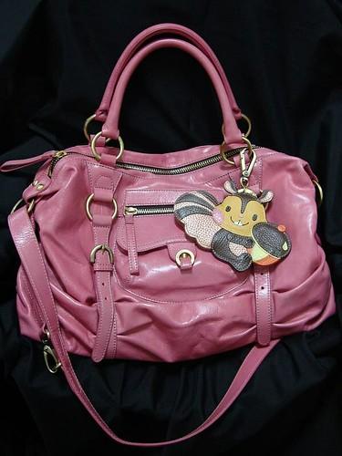 你拍攝的 2009 Feb愛用包。