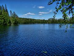 Finnish landscape (Miia Hietanen) Tags: nature suomi finland landscape maisema