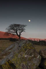 Moon and the tree (PSHiggins) Tags: sunset red portrait moon mountains tree silhouette wall wales fence treesilhouette moss nikon stones kitlens bluesky luna fullmoon snowdon stonewall lichen snowdonia bethesda stonewalls deepblue northwales polariser yrelen redhills d40 gerlan redmountains gyrnwigau