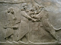 Assyrian lion hunt, British Museum (Niall Corbet) Tags: sculpture london king iraq lion carving relief britishmuseum hunt assyria assyrian