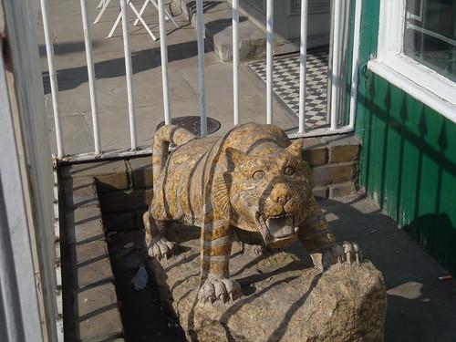 Stone tiger (1)