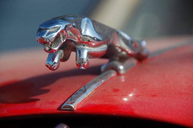 Red Jaguar Mark 1 Chrome quotpouncing Jaguarquot statuette on front of the hood by Chris Devers