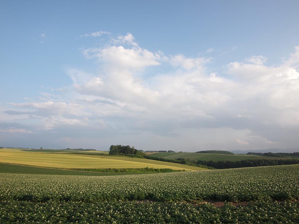 E-P1 Test Shot @Biei, Hokkaido 2
