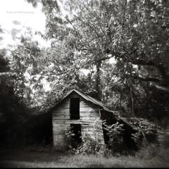 A Barn Named Holga by evanleavitt - Morgan County Holga 120N Ilford HP5 Plus 400 View On Black