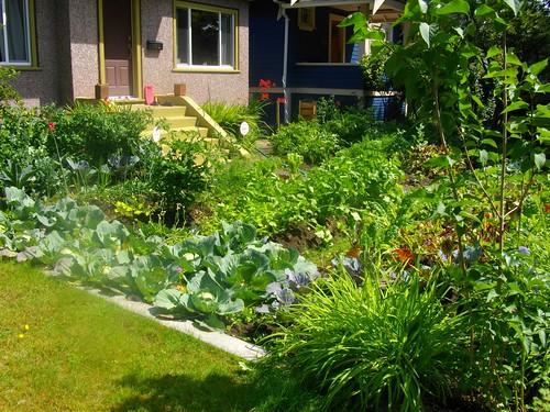 Front Yard Veggie Garden