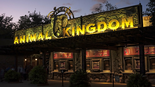 Disney\'s Animal Kingdom
