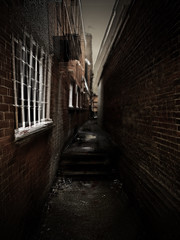 staggering down a creepy alley to escape (greensatsuma) Tags: